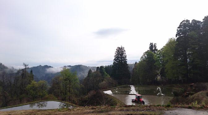 【松之山カラー~初心者の春~】