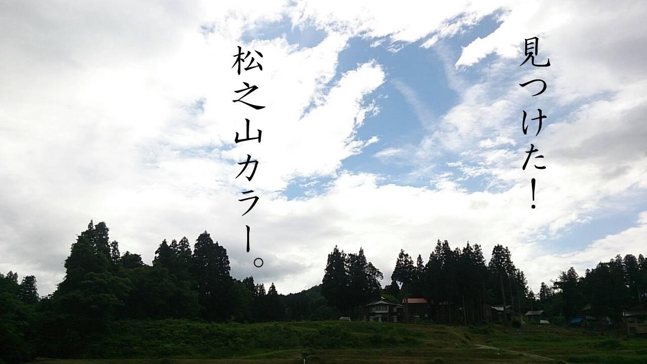 松之山カラー