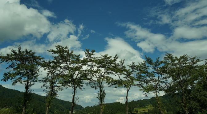 松之山 ~管領塚を訪ねたら ~