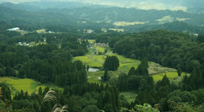 松之山  〜歩く 大松山〜