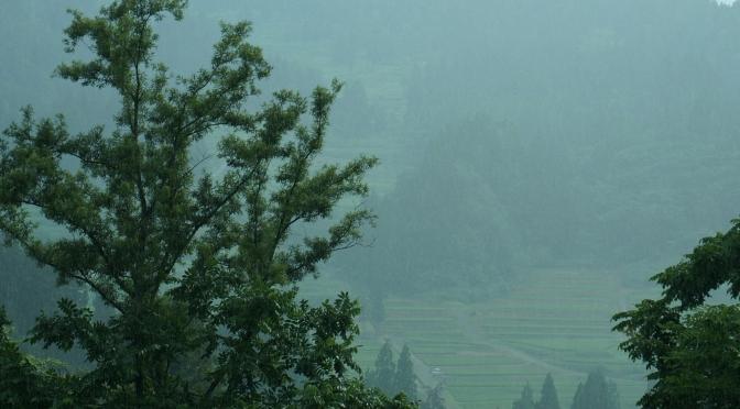 松之山〜水梨・雨の中で見つけたのは…〜